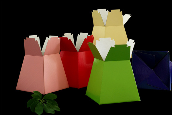 LIVNIG VASES PORTO TRANSPOTER BOXES  BOUQUET FLOWERS BOX OF 30 IN 5 MIXED COLORS