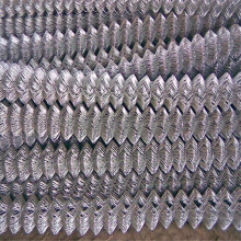 50X50 Open Galvanized Chain Link Fence
