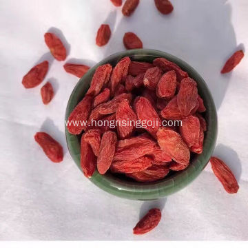 Conventional Goji Berry from Ningxia Hong Rising