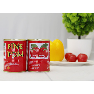 Turkish canned tomato paste tin