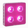 COB LED grow light 800W with CE RoHS