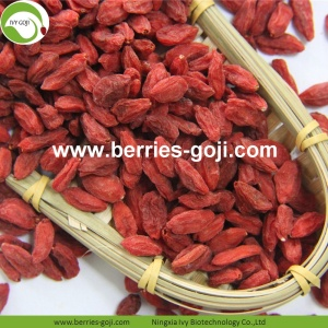 Wholesale Bulk  Price Low Pesticide Goji Berries