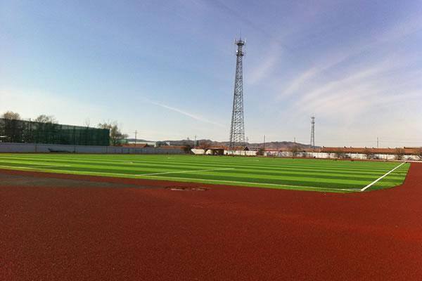MT-Peace,Artificial Grass for Football