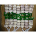 Normal White Garlic From Jinxiang