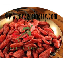 Dried Goji Berries/Low pesticide residue wolfberry-2017 Crop