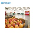 Controlled atmosphere cold storage room for apples