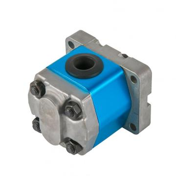 gear pump using motor