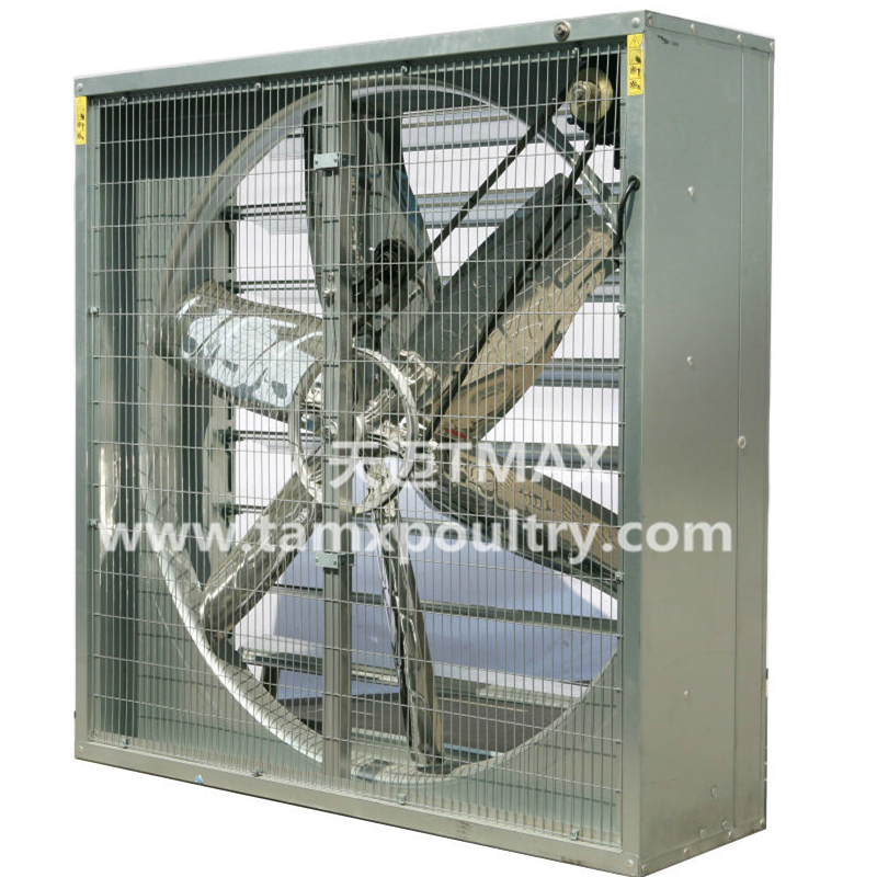 Chicken Exhaust Fan System