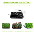 Hydroponic Growing Kit Twous Nursery plastik Grenn