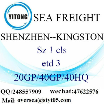 Shenzhen Port Sea Freight Shipping To Kingston