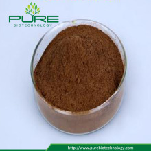 Schisandra chinensis extract powder