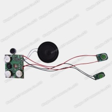 Sound Module for Greeting Card, Voice Module, Recordable Module