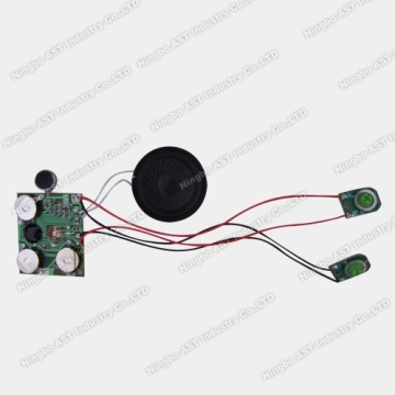 Sound Module for Greeting Card, Voice Module,Recordable Module