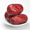 Chinese Red Dates Hong Zao