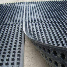 Cheap for China Dimple Drainage Sheet,Hdpe Dimple Drainage Sheet,Basement Drainage Sheet Supplier 650gsm Low Cost Good PE plastic Drainage Board export to Uzbekistan Importers