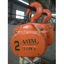 Reliable for Best Vital Chain Blocks,Manual Crane Hoist,Vital Chain Pulley Block,Vital Chain Hoist Manufacturer in China Vital Chain Hoist Block supply to Russian Federation Factory