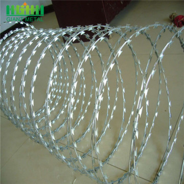 Factory Sale Galvanized Razor Wire on Fence Top