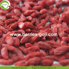 Lose Weight Dried Natural Healthy Himalayan Goji Berry