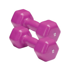 Fixed Competitive Price for Vinyl Coated Dumbbell 12 LB Vinyl  Hex Dumbbell export to Kenya Supplier