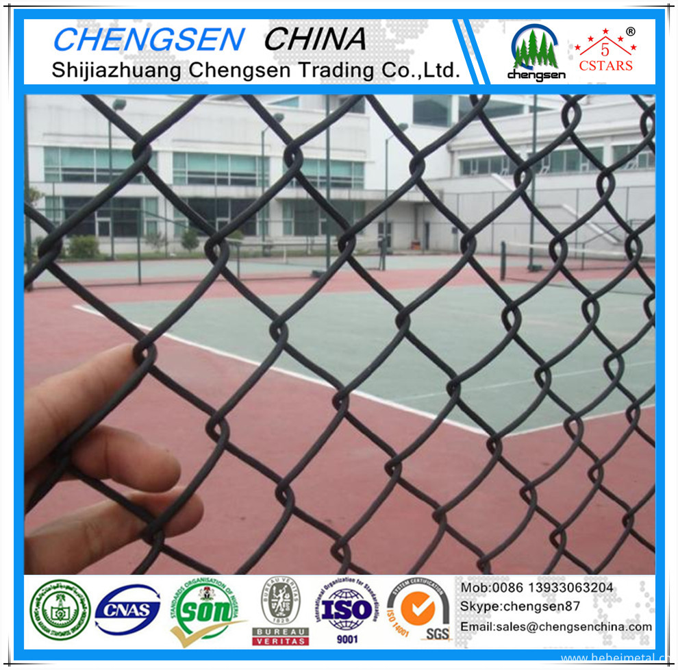 chain link fence (5)