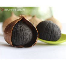 Organic Single ( Solo ) Bulb Black Garlic