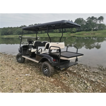 purchase a 6 seater gas powered golf cart for sale