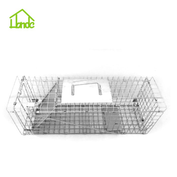 Squirrel Collapsible Steel trap Cage Trap