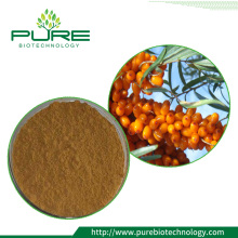 Sea Buckthorn Extract/ Hippophae Rhamnoides Extract