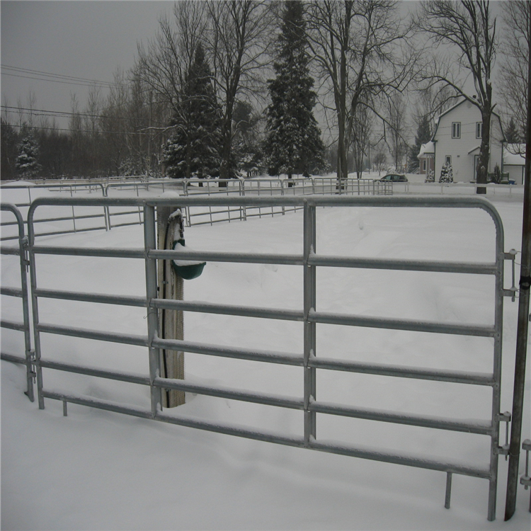 horse fence011