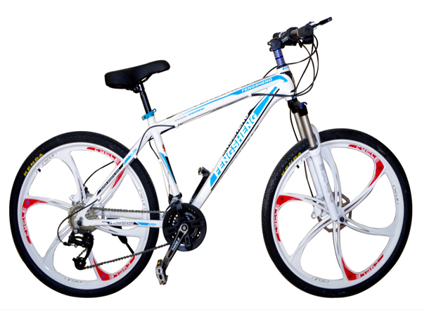 Aluminium Alloy MTB Bicycles with 21 Speed