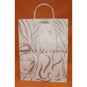 White Art Decorative Twisting Handle Paper Bag