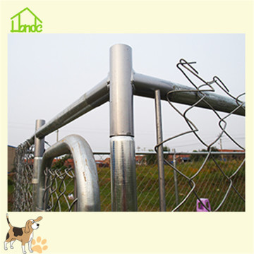 Outside chain link dog kennel for large dogs
