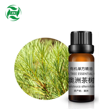 COA 100% organic pure tea tree essential oilApplication