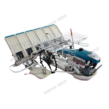 Rice Seedling Transplanter 6 Rows 2Zs-6A