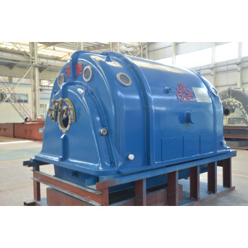 Steam Turbine Induction Generator
