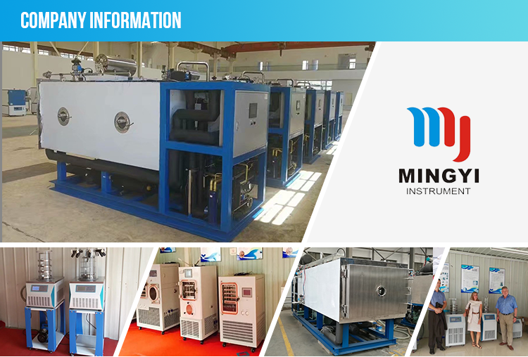 pharmaceutical freeze drying machine