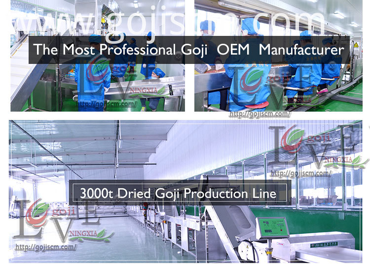 Conventional Goji Berries production line