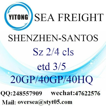 Shenzhen Port Sea Freight Shipping To Santos