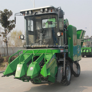 corn maize cutting harvester machine