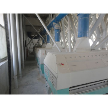 200 tons of floor type large flour machinery