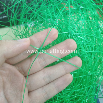 Green color climbing plant support net