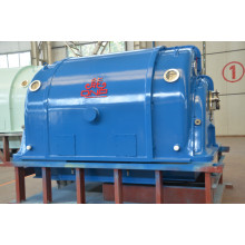 China for Biomass Generation Micro Steam Turbine Electric Generator QNP export to United States Importers