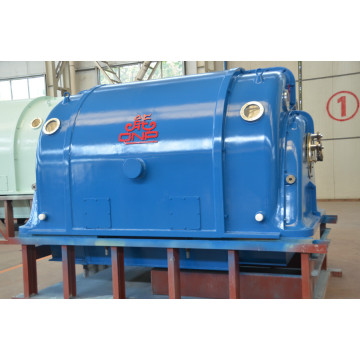 Micro Steam Turbine Electric Generator QNP