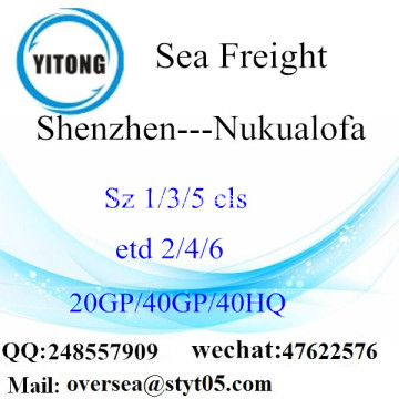 Shenzhen Port Sea Freight Shipping To Nukualofa