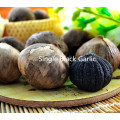 Sweet and Sour of single Black Garlic