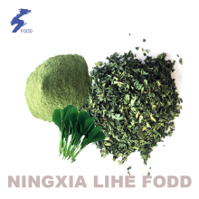 Hot sale for Natural Dried Spinach Powder Air dried vegetables spinach powder export to Italy Suppliers