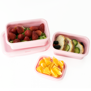Silicone Food Storage Containers with Airtight Plastic Lids