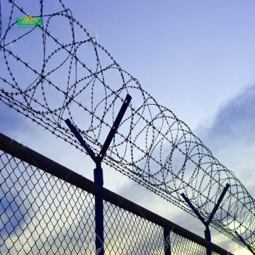 Razor barbed wire meshes
