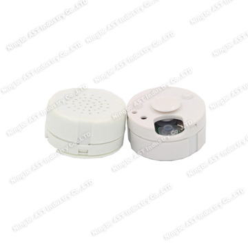 Voice Recorder, Digital Voice Recorder, Sound Module
