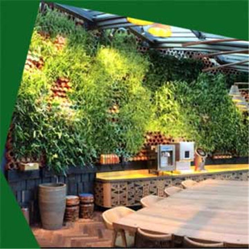 Leading for Artificial wall Grass Artificial creative plant wall export to Poland Wholesale